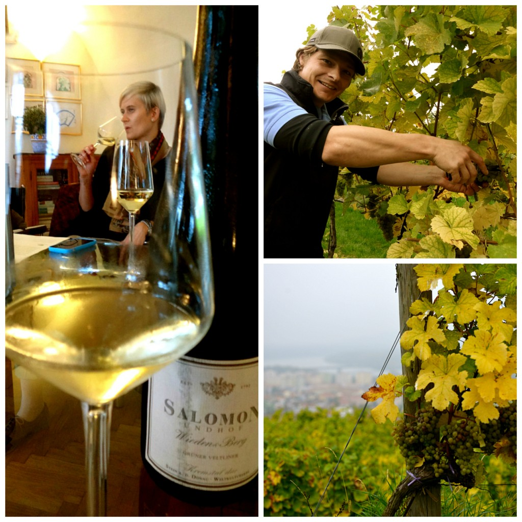 vins Autriche