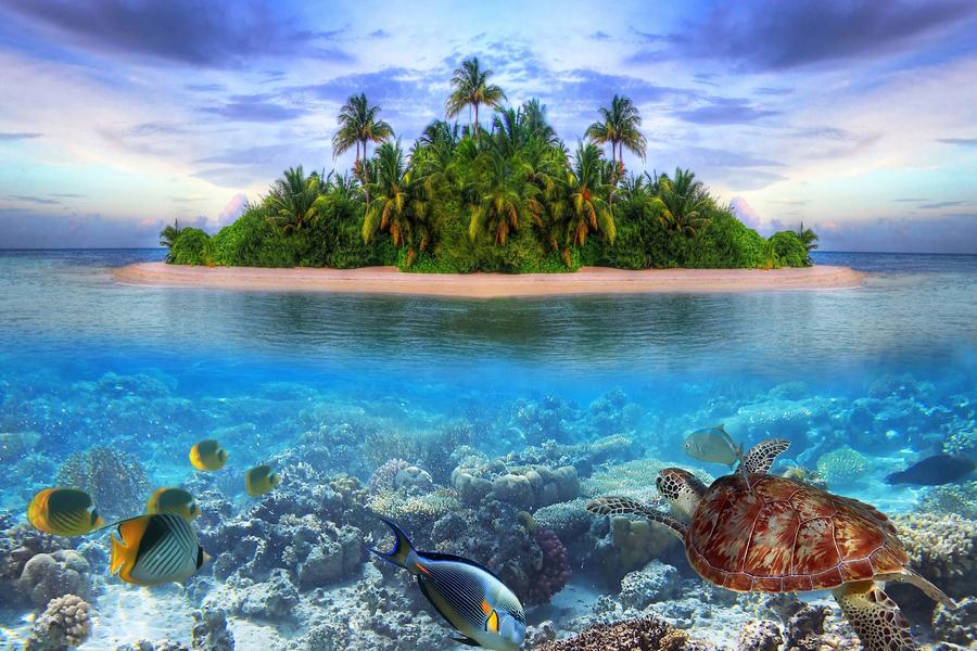 Maldives pétrole