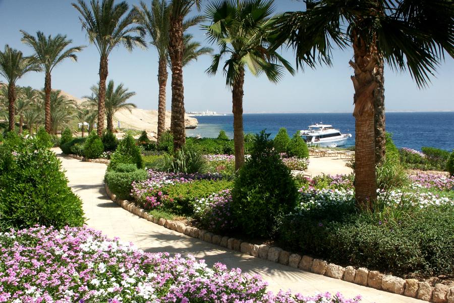 Egypte Sharm