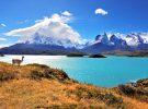 Fabuleuse croisière en Amérique du Sud / Patagonie