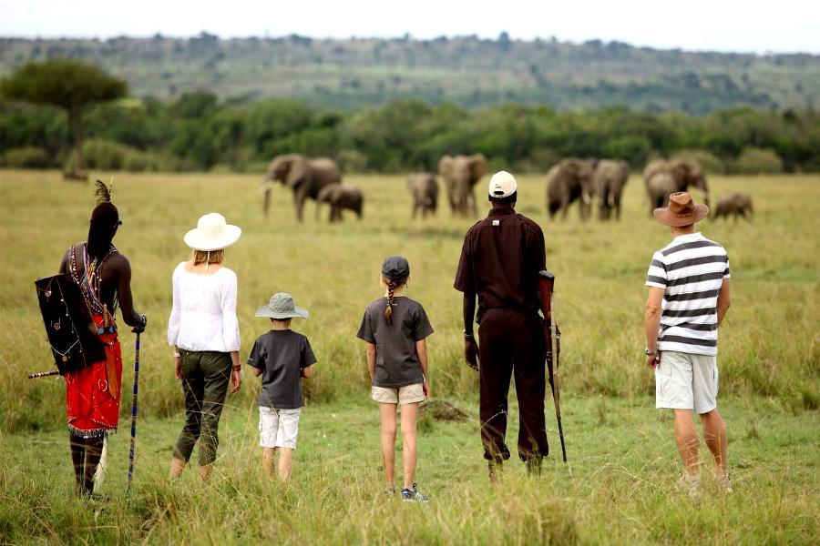 Safari pédestre au Kenya