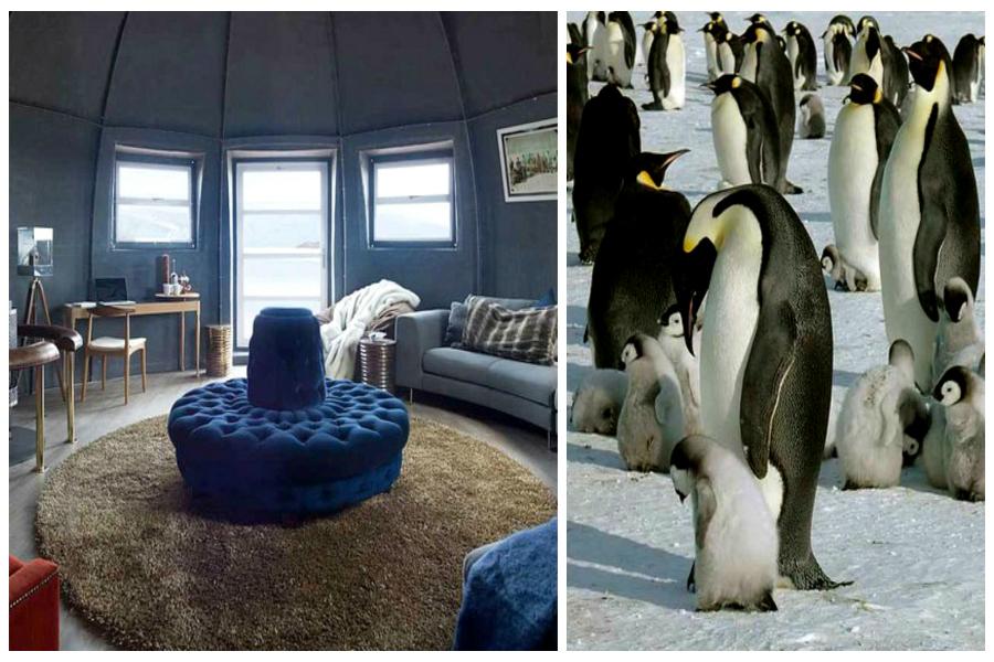 Polluer l'Antarctique : un luxe de nantis ?