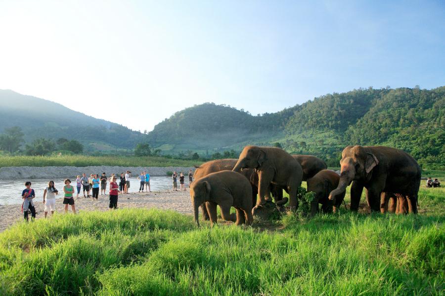 Thaïlande : en dehors des plages