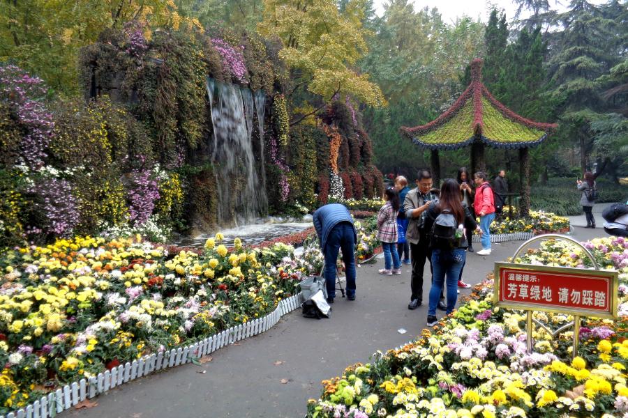 Chine : VIDEO Chengdu