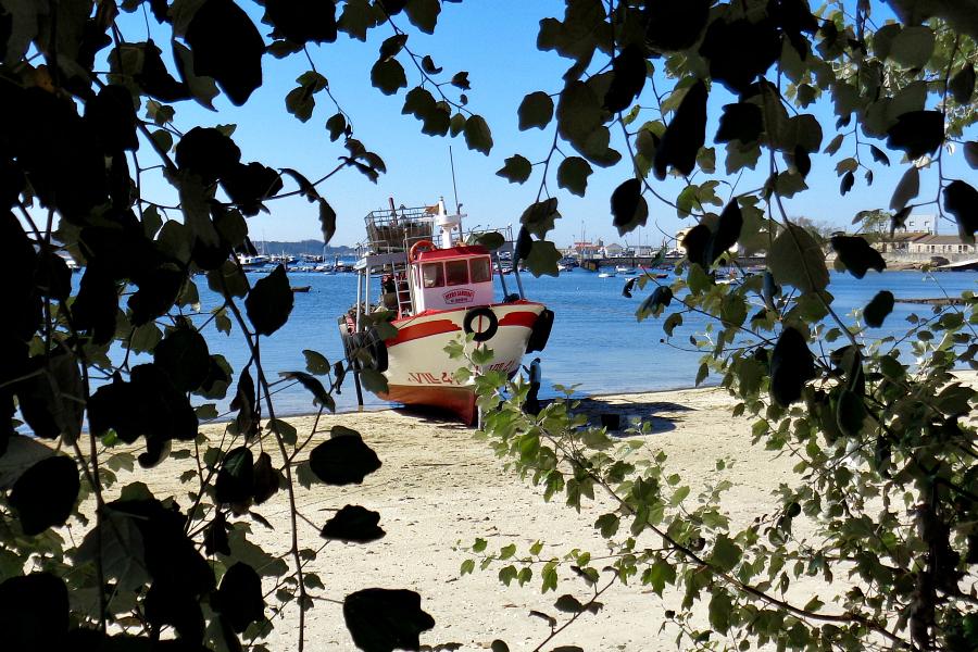 Espagne : Galice (bons plans)
