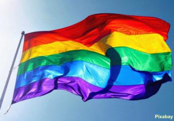 gay Brésil