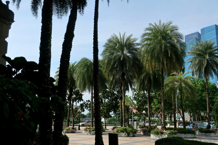 Singapour : ville verte