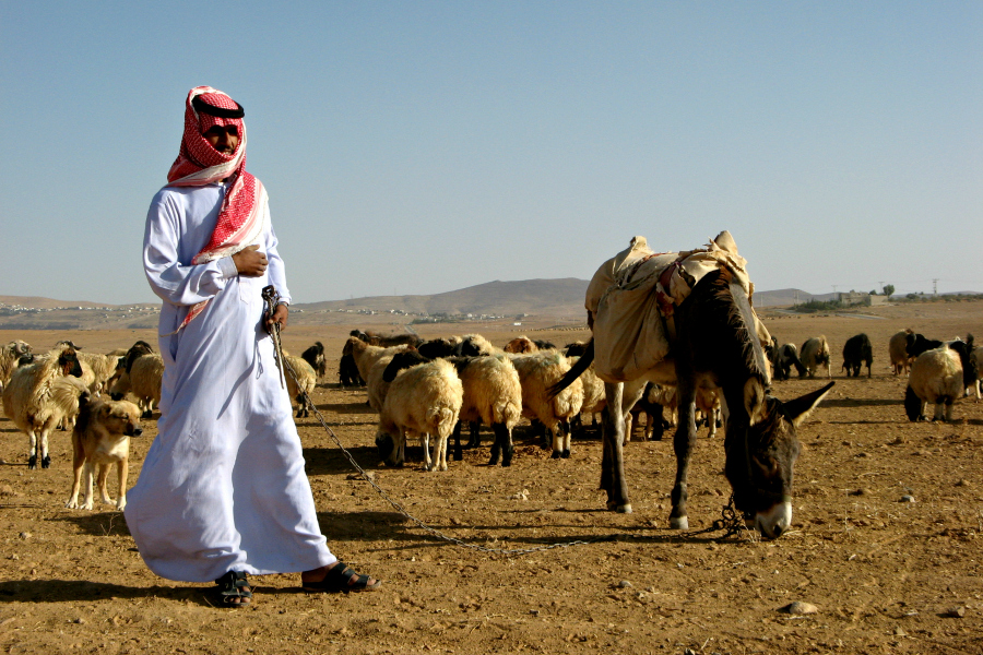 Moyen-Orient : Jordanie