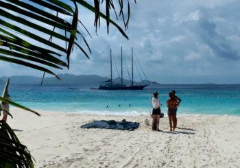 Sea Star, Seychelles
