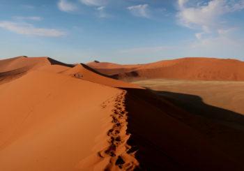 Désert namibien