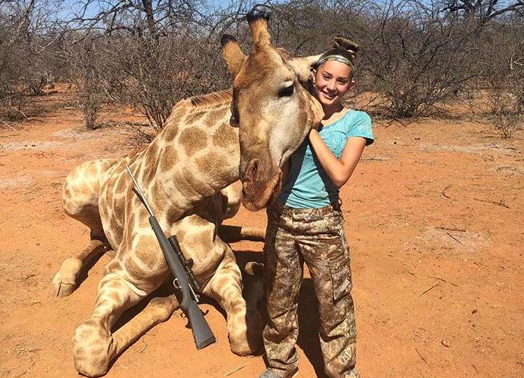 Girafes : la fierté des chasseurs de trophées