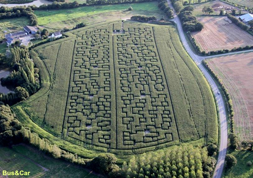 Un labyrinthe de maïs !