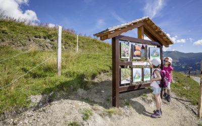 Suisse : sentiers ludiques pour petits et grands
