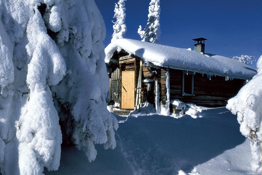 Norvège : le Grand Nord