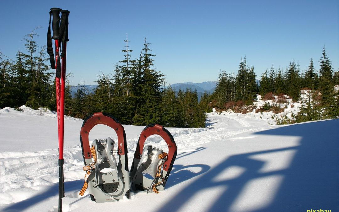 Montagne : cet hiver, les raquettes ont la cote