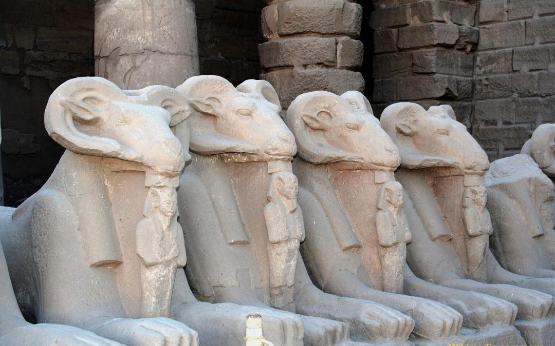 Egypte (Louxor) : les béliers du temple de Karnak