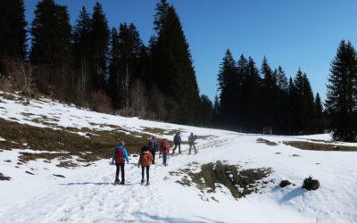 Balades nature au Jura suisse