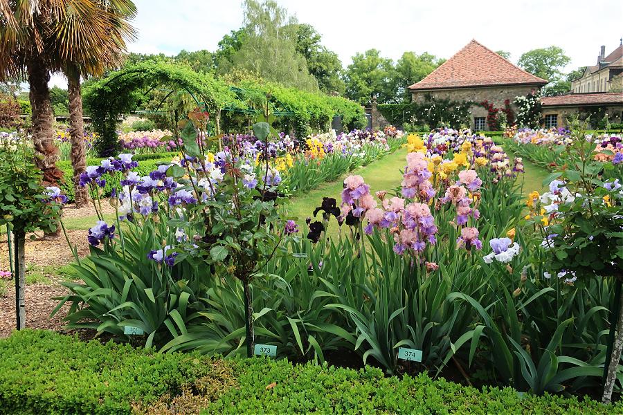 Suisse : VIDEO Vuillerens (Jardin d'iris)
