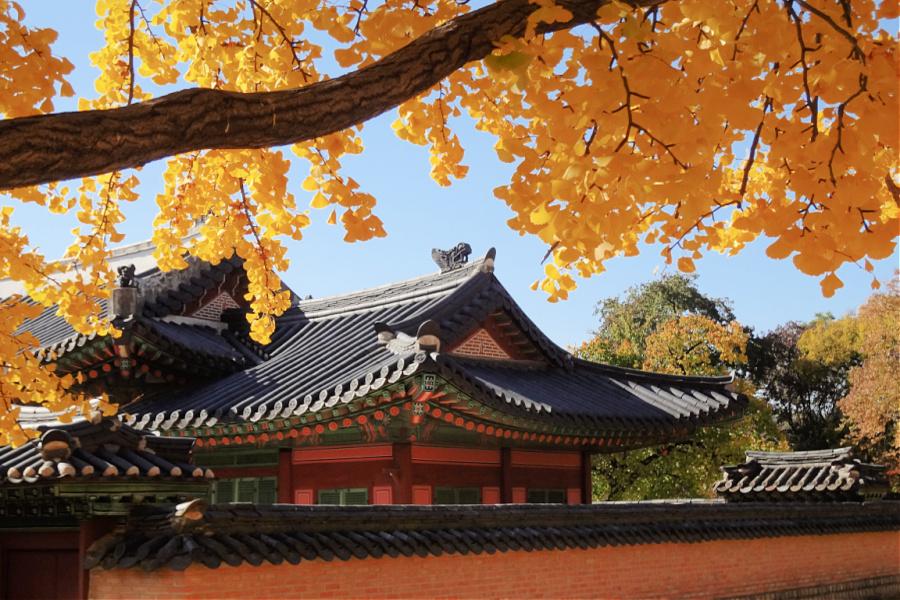Corée : VIDEO Séoul (le palais du bonheur)